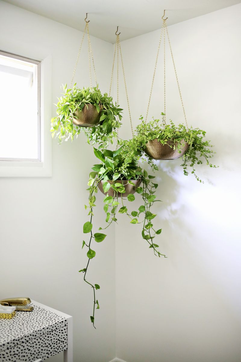 Uncategorized Hanging Garden Planter 8 tips for a hanging planters