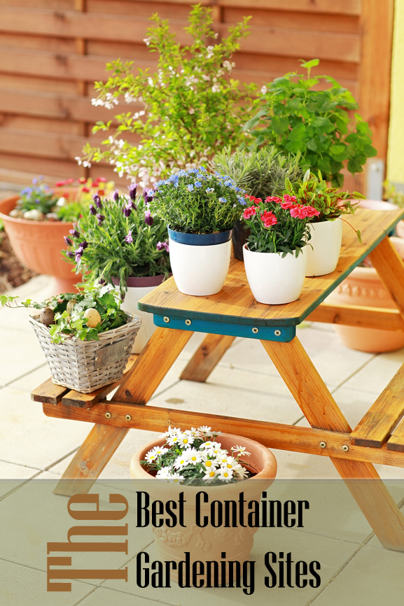 Image Result For Home And Garden Yard Ideas