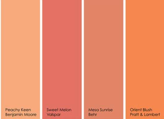 Colors Of Summer Orange